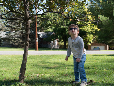 Liam on front yard October 2017