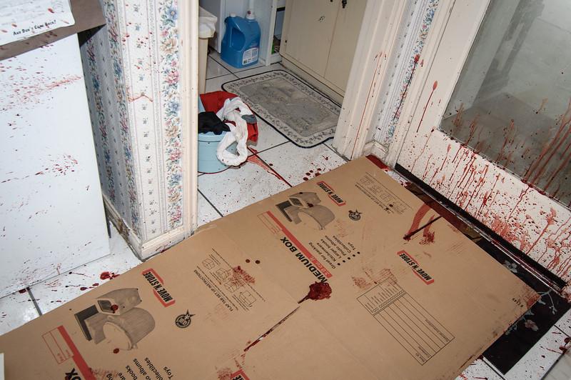Subirats Home Deer damage-3993.jpg