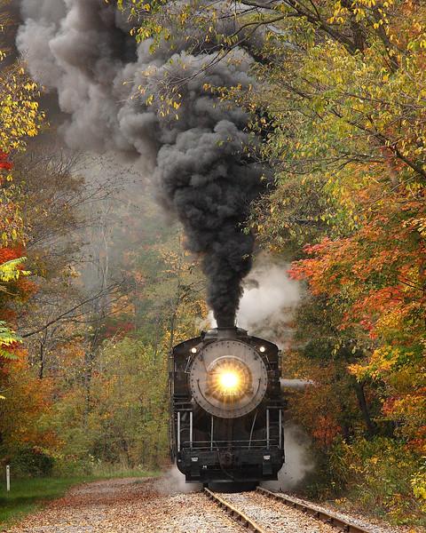 16 x 20 print Western Maryland Scenic Railroad