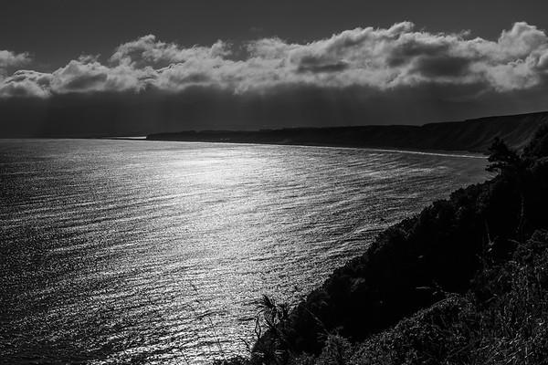 2017 04 Cape Palliser and Martinborough