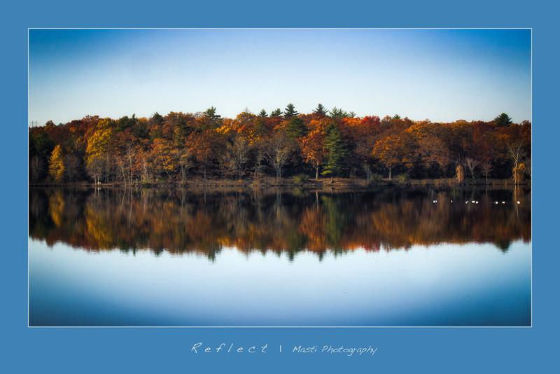 Reflect-2.jpg