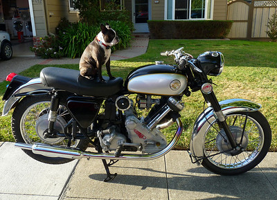 My Motorcyles