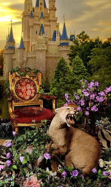 enchanted castle 2.jpeg