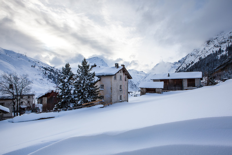 Rheinwald-Winter-D-Aebli-3735.jpg