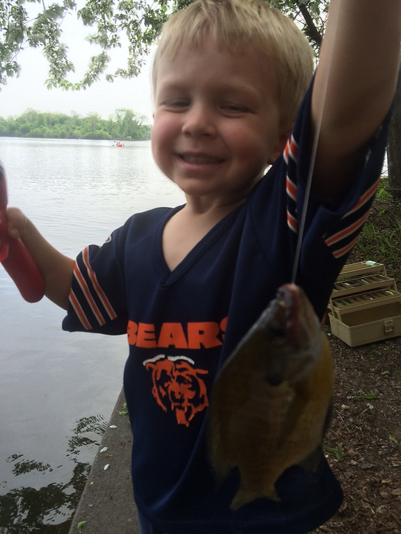 ". Three-year-old Cole Sitek from St. Paul was proud of this sunny he caught from Lake of the Isles for a reason. Reports dad Steve Sitek: ""Cole\'s first time fishing and his first fish, on his first cast!  He was so proud. (Don\'t hold the bears jersey against us - he had a full Vikings uniform on later in the day!)\"" (Photo courtesy Steve Sitek)"