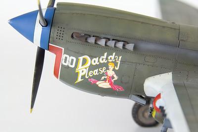Eduard P-40