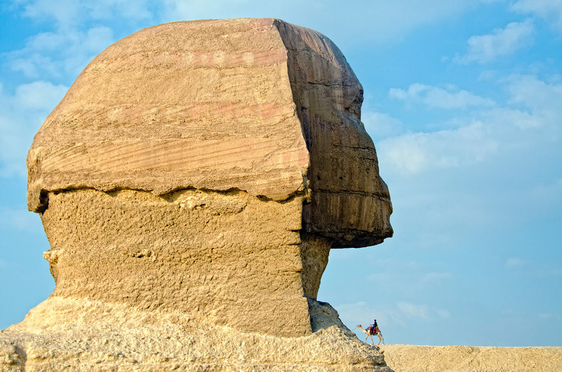 Sphinx and a camel