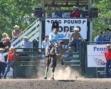 Saddle Bronc (Section 1)