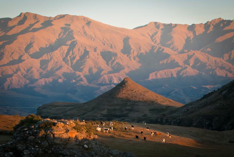 Tarija 201205 Valle de Los Condores (226).jpg