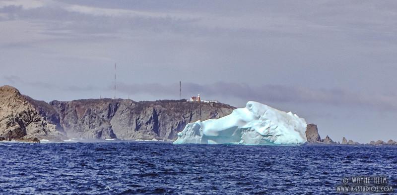 Iceberg 58   Photography by Wayne Heim
