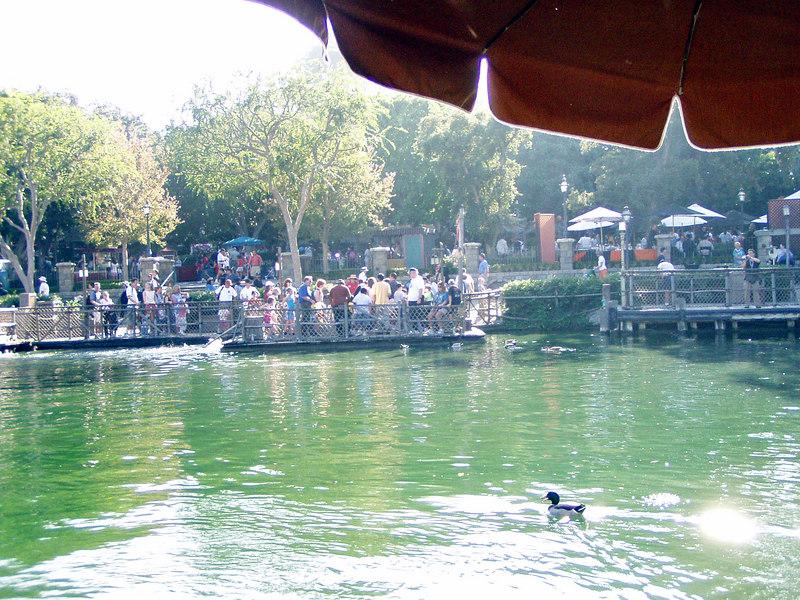 140.  Disneyland and California Adventure.JPG
