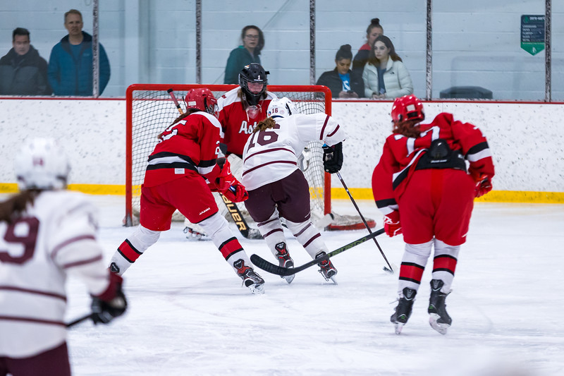 2019-2020 HHS GIRLS HOCKEY VS PINKERTON NH QUARTER FINAL-791.jpg