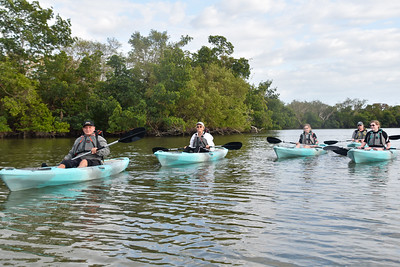Sunset Bird Rookery Kayak Tour - Kusler