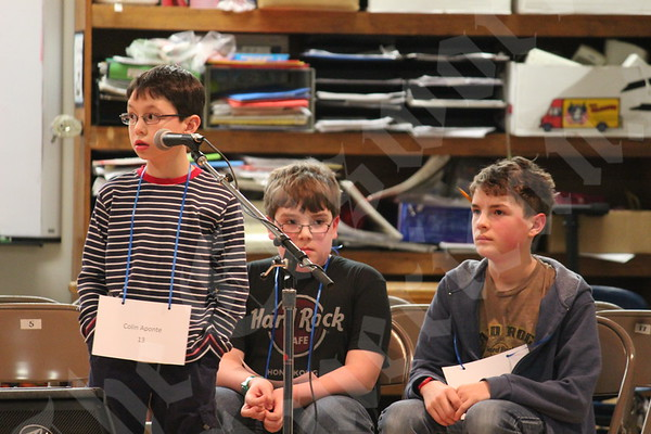 County Spelling Bee 2015