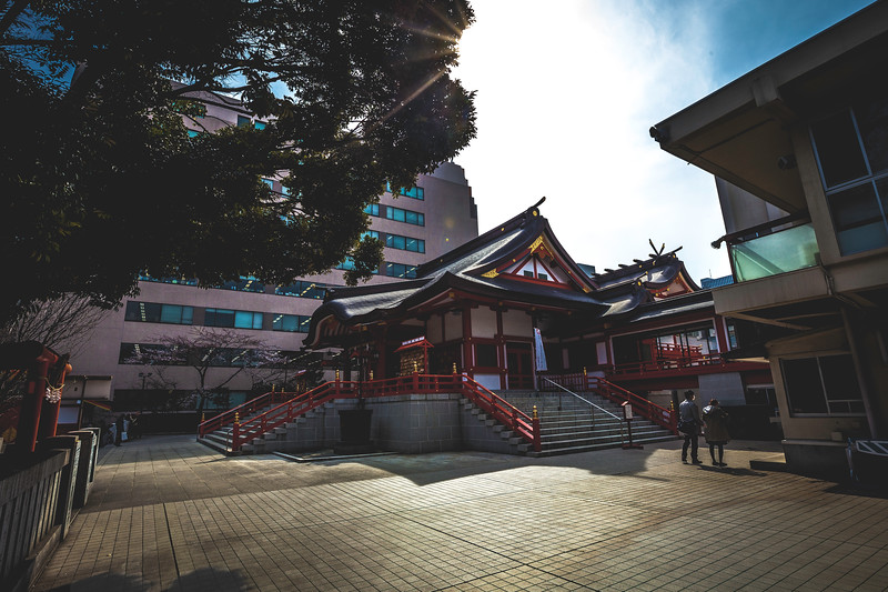 Japan Downtown Temple.jpg
