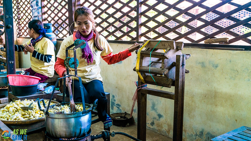 Silk-Farm-01745.jpg