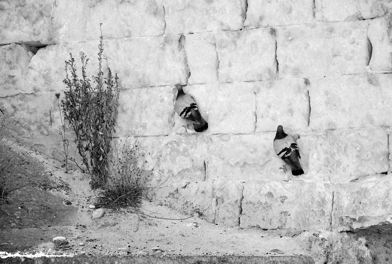 Hang On! - Matera, Italy - August 17, 2010