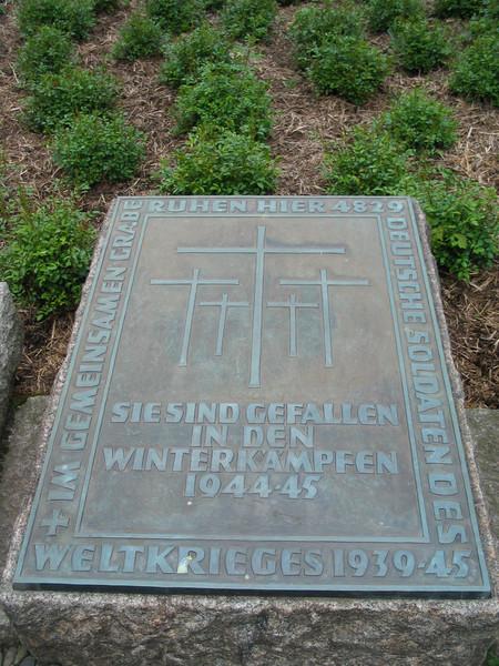 Sie Sind Gefallen In Den Winterkampfen 1944-45