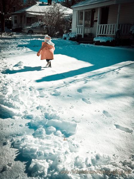 20120122_Winter_0010.jpg