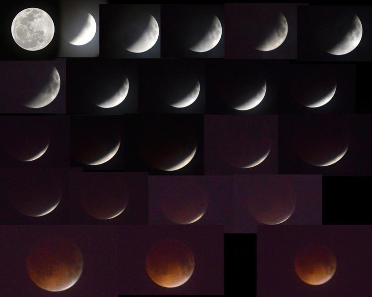 Blood Moon 4 15 2014 at 2-30 AM.jpg