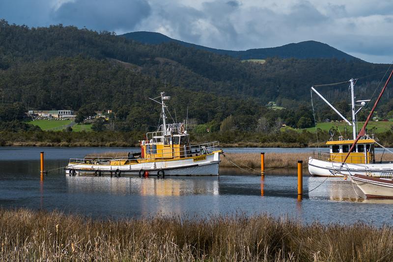Tasmania-36.jpg