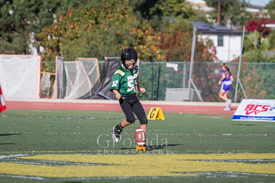 D6 Packers-Superbowl