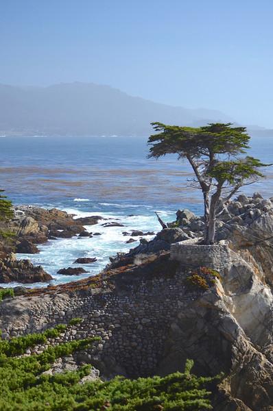 Monterey/CA - Oct., 2013
