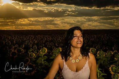 Christina Rose in Sunflowers