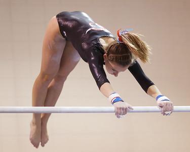 Gymnastics 2013 - 2014