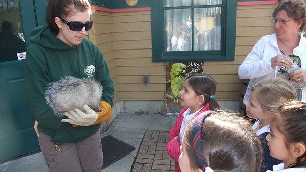 First Grade Visits the Elmwood Park Zoo