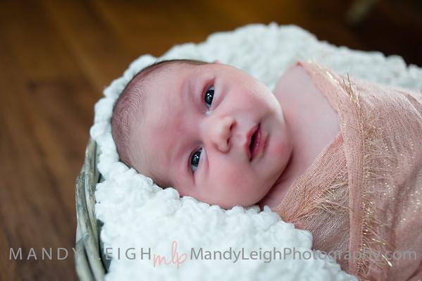 McKenna Newborn (Cara)