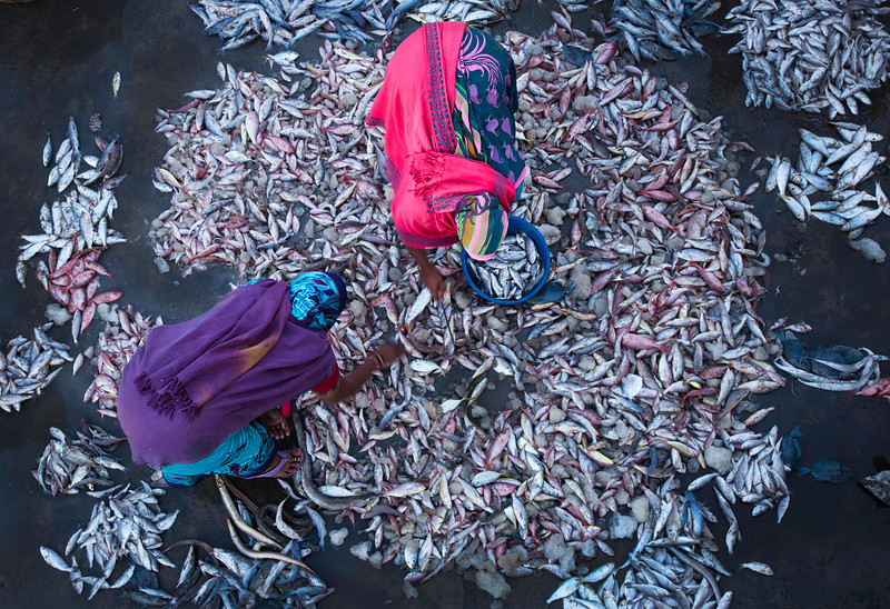 fish market two women Diu.jpg