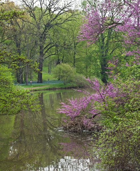 Spring13-0512.jpg