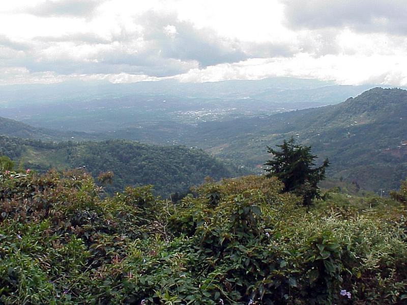 Vista del Valle overlooking San Isidro Costa Rica 2-15-03 (50898331)