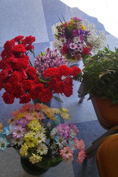 springgarden3.jpg
