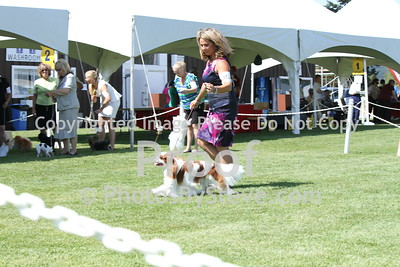 2014 Vancouver Island Shows