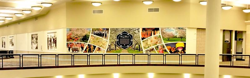 Macon Mall Mural