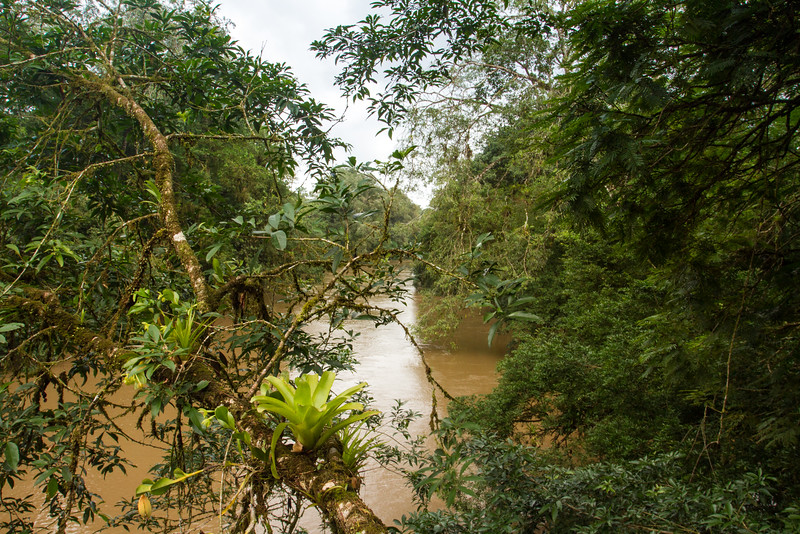 La Selva Biological Station, Costa Rica