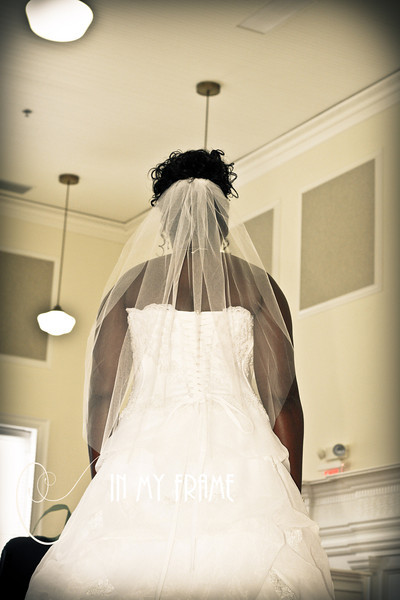 Lanisha Stover's Bridal Portraits