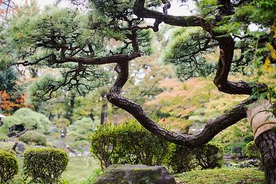 Japan - Tokyo - Hibiya Park