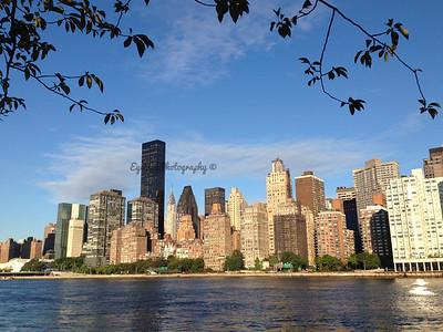 Newsletter - New York