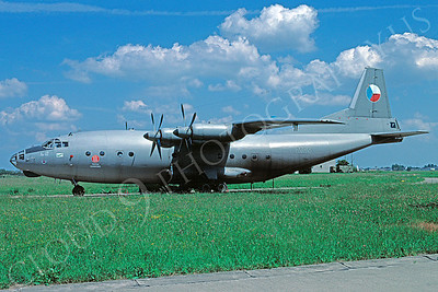 Antonov An-12 Cub Military Airplane Pictures
