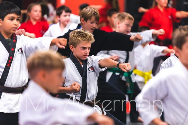 Martial Arts Portfolio