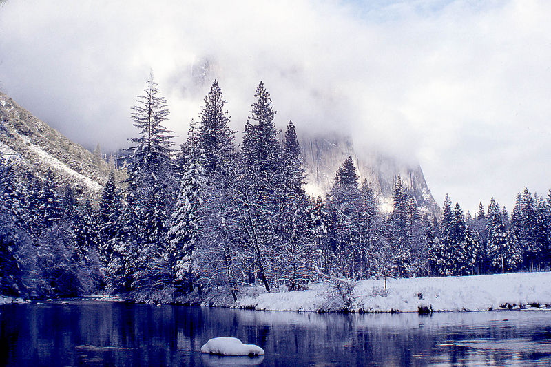 Yosemite8 Schildgen.jpg
