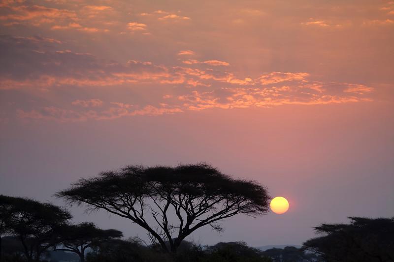 Amboseli Sunset _MG_9971.jpg