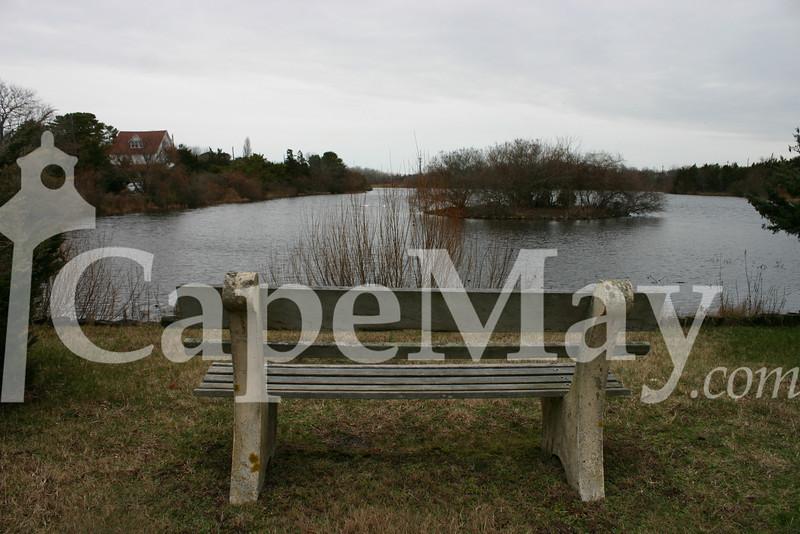 Lake Lily.jpg