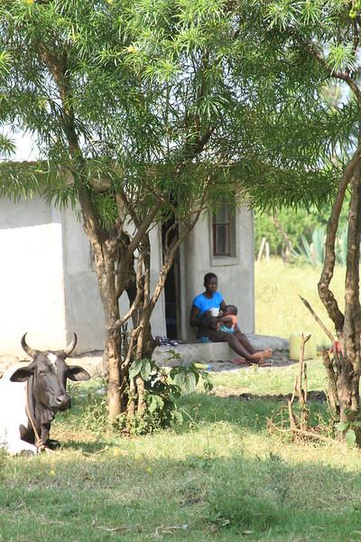 Kenya Part1 '15 553.JPG