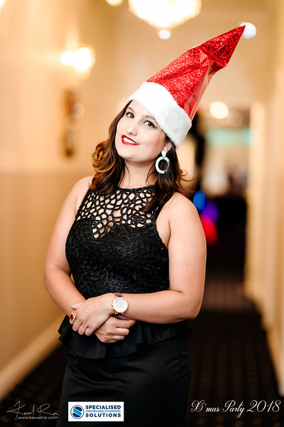 Specialised Solutions Xmas Party 2018 - Web (36 of 315)_final.jpg
