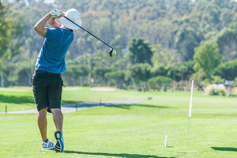 Golf413.jpg