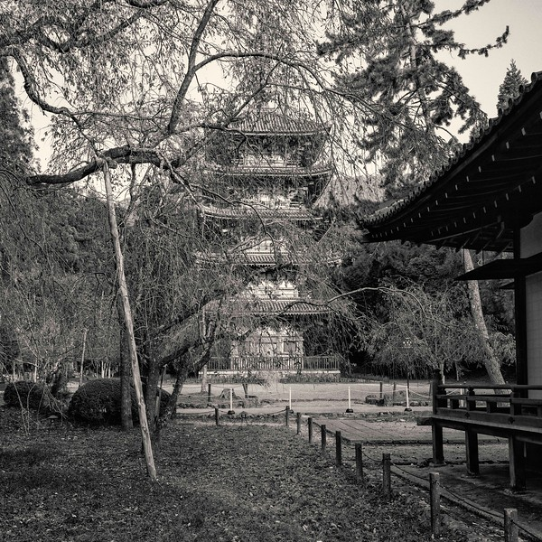 Early autumn at Daigoji temple. Pagoda.